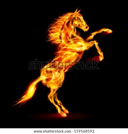 Fire horse rearing up. Illustration on black background. - stock vector