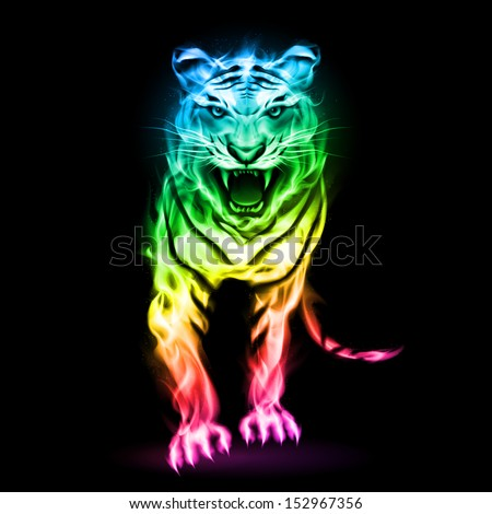 Fire tiger in spectrum colors isolated on black background.  - stock vector