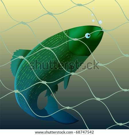 Fish got to a fishing net - stock vector