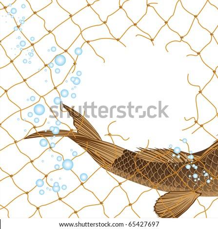 fish in fishing nets - stock vector