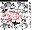 fish set - doodle - stock vector