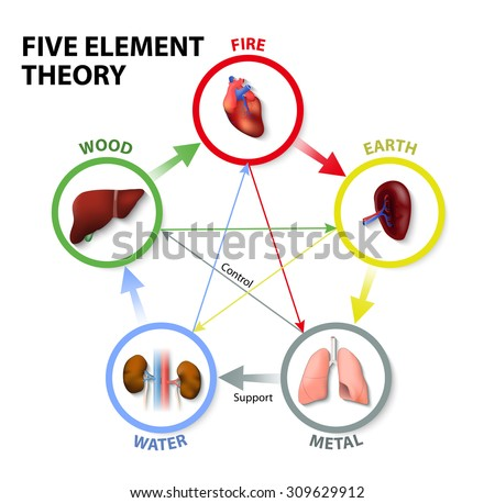 Five Element Theory. Oriental Medicine. The five element theory is used in traditional chinese medicine as a way to diagnose and treat illness. - stock vector