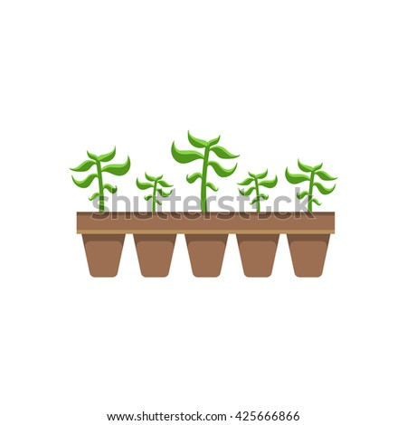 Five Plants In Pots Bright Color Simple Style Flat Vector Illustrations On White Background