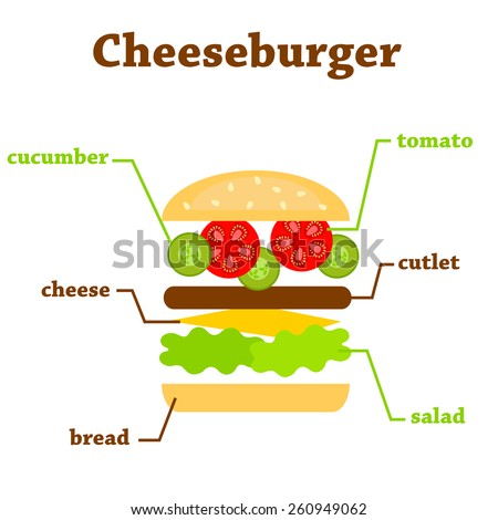 Flat illustration of cheeseburger ingredients with text - stock vector