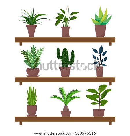 Flat style houseplants and flowers in pots on the shelf vector icons on white background. Set of green indoor vector houseplants icons.  - stock vector