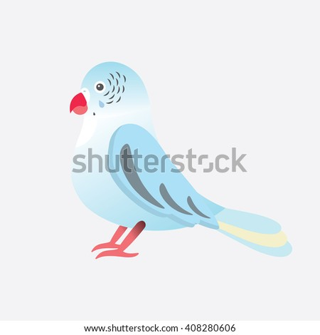 Flat vector illustration of parrot Parakeet bird. Cartoon festive element for design, object isolated on white black  background. Blue, pink, red, white colors 