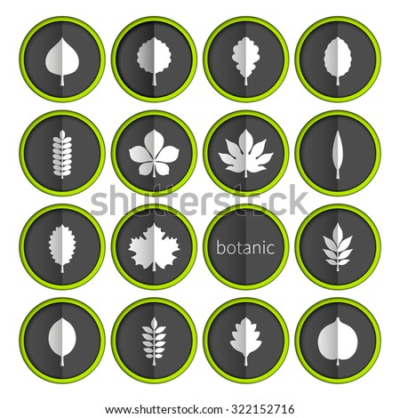 Flat vector illustration: set of sixteen circle slot windows with white silhouettes of different tree leaves on black backdrops with green stroke and vertical shadow isolated on white background