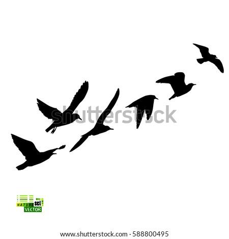 flock birds silhouette vector stock vector 588800495 shutterstock rh shutterstock com sparrow silhouette vector bird silhouette vector free