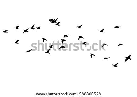 flock birds silhouette vector stock vector 588800528 shutterstock rh shutterstock com bird silhouette vector free tree bird silhouette vector