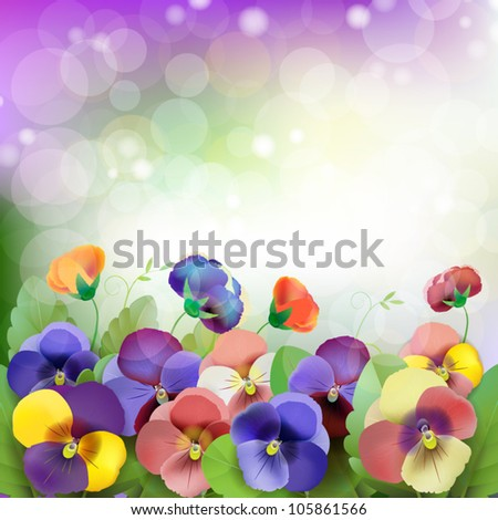 Floral background, colorful pansies flowers in the meadow - stock vector