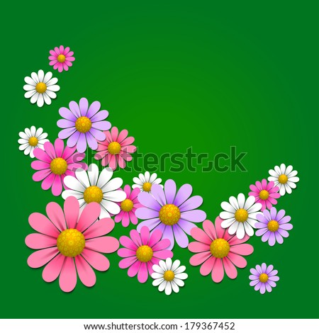 Floral background with daisy on the green background, vector illustration