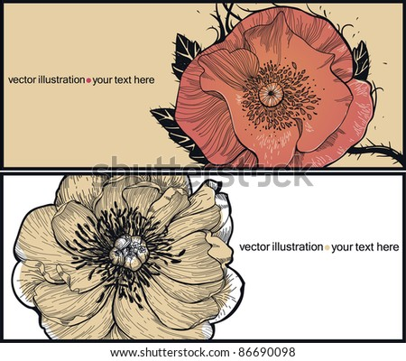 floral cards with  a blooming poppy and peony - stock vector
