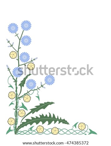 Floral corner ornament with chicory and bindweed flowers and leaves.