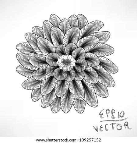 Floral Elements for design, EPS10 Vector background - stock vector