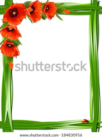 Floral frame with red poppies and ladybirds. Vector background - stock vector