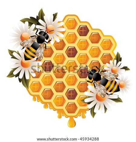 Floral Honey Concept - stock vector