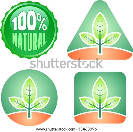 Floral labels - stock vector