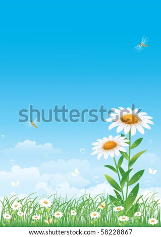 Floral meadow collection - stock vector