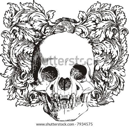 Floral skull vector illustration - stock vector