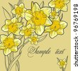 Floral spring background with the daffodils Beautiful vintage card - stock vector