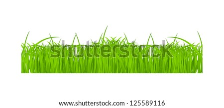 Flower and grass Borders set. vector illustration - stock vector