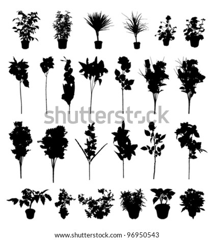flower and plant silhouettes - stock vector