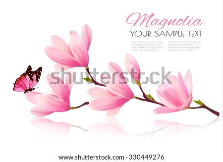 Flower background with blossom branch of pink magnolia and butterfly. Vector  - stock vector