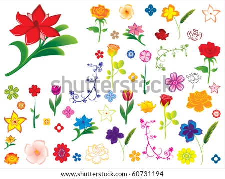 Flower Collection Vector - stock vector
