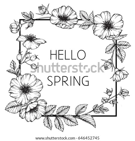 Flower Frame Butterfly Peas Floral Drawing Stock Photo (Photo ...