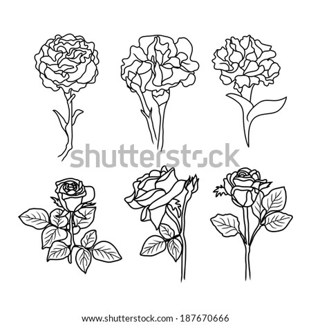 Search additionally Stock Vector Garden Buttercups Ranunculus Garden Flowers Painted Line On A White Background Vector Sketch Of as well Stock Vector Two Blooming Asiatic Lilies Flowers Vector Sketch Outline further Design huntsville botanical additionally Search. on beautiful outdoor garden wedding html