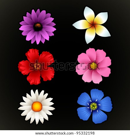 Flower Isolated - stock vector
