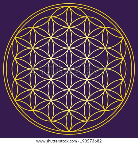 Flower of Life Gold on dark purple background - a geometrical figure, composed of multiple evenly-spaced, overlapping circles. A strong symbol since ancient times, forming a flower-like pattern. - stock vector