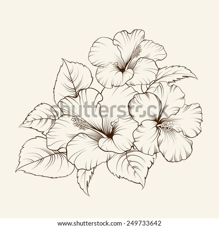 Flower of mallow on a white background. Vector illustration - stock vector