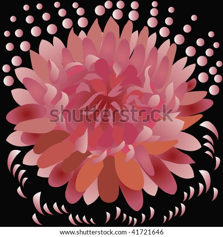 Flower on a black background - stock vector
