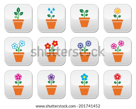 Flower, plant in pot vector colorful buttons set