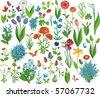 flower set in vector - stock vector