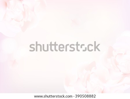 Flower soft background with peonies. Closeup of pink peony flowers, blur vector floral background, abstract editable template  - stock vector