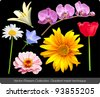 Flower vector set - stock photo