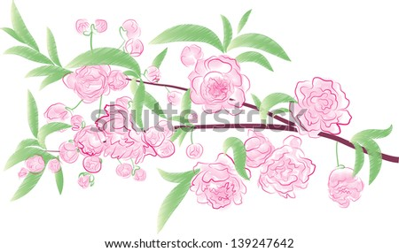 flowering branch. watercolor flowers in white - stock vector