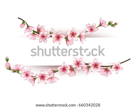 Flowering Branches Vector Frame Illustration Tree Stock Vector ...