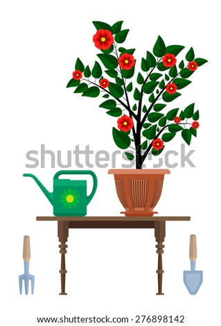 Flowerpot in pot watering can and instrument for gardening. Eps10 vector illustration. Isolated on white background - stock vector