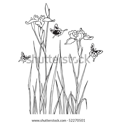 Flowers and butterflies. Vector illustration
