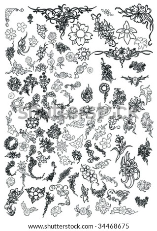 flowers and floral collection - stock vector
