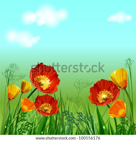 Flowers and grass against the sky, a summer day - stock vector
