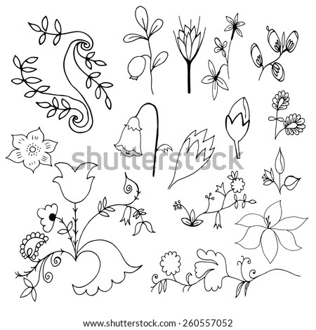 Flowers and leaves hand drawn doodle set