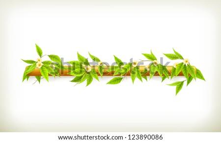 Flowers banner, vector - stock vector