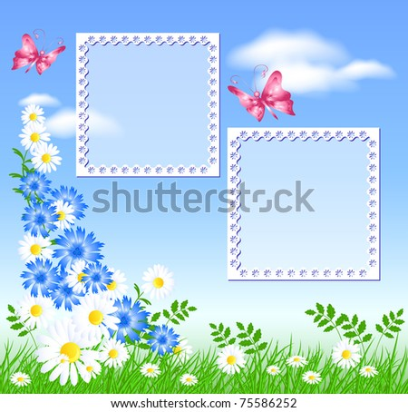 Flowers on the green grass, butterflies and photo frame