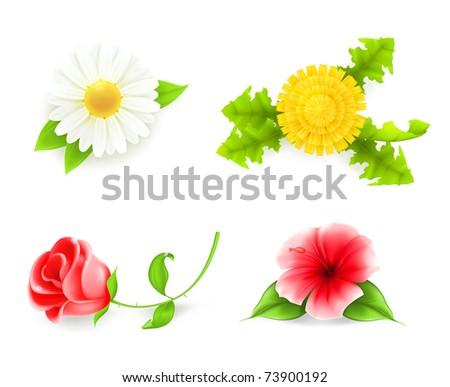 Flowers set, 10eps - stock vector
