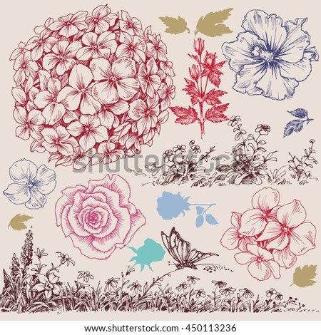 Flowers set. Floral design elements hand drawn - stock vector