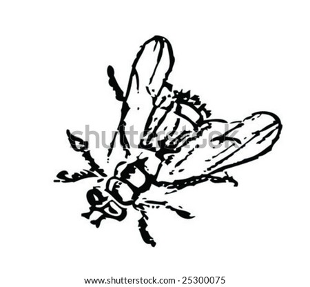 fly - stock vector